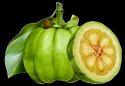 Natural Garcinia Cambogia Extract