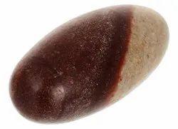 Kesar Zems Stone Lord Narmadeshvar Shivling Idol (5 cm x 1.5 cm x 1.5 cm)