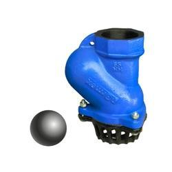 Normex Ball Foot Valve