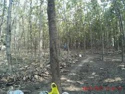Agricultural Land, Size/ Area: 1 TO 5000 Acres, Rs 600000