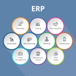 300000 ERP Solution Service for Organisation Wise