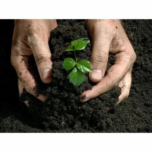 Non Toxic Bio Agro Fertilizer