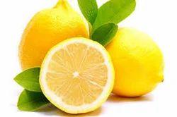 Lemon (Citrus limun) Extract