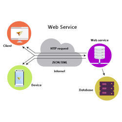 Hosting With Own Domain Web Service Development