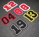 Number Patch - Chenille