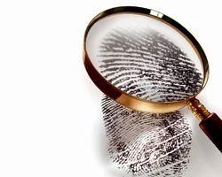 Finger Print Investigation
