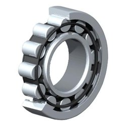 Stainless Steel Single Row Cylindrical Roller Bearing