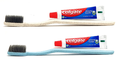 Biodegradable Toothbrush Dental Kit