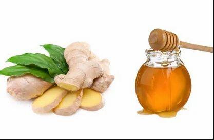 Honey   Minhaj Honey Traders   Supplier in Jp Nagar Post