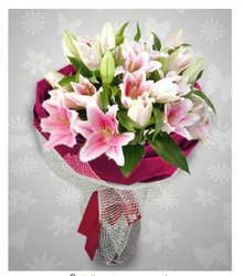 FG Lily 002 Lilly Flower Bunch