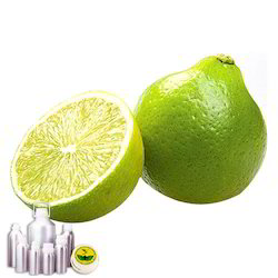 Bergamot Co2 Extract Oil