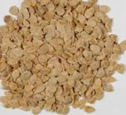 white yellow Tomato Seed, Packaging Size: 10-100gm