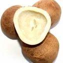 Sri Venkateshwara Dry Coconut, Packaging Type: Gunny Bag