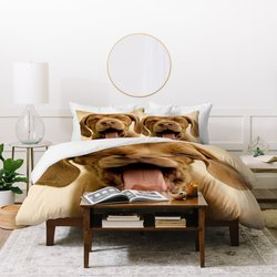 Design Your Own Bed Sheets Wholesale Furniture Design For Your Home