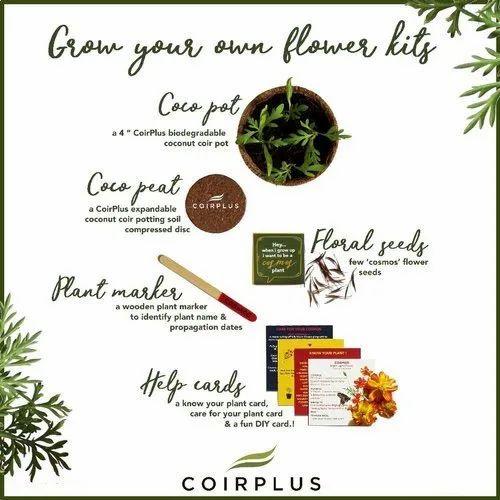 Coco Plant Grow Kit