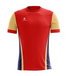 triumph Designer T Shirts, Packaging Type: Box