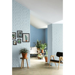 Interior Wall Paints