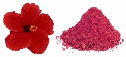 Dried Hibiscus Powder Herbs Powder Lawyers Colony Agra