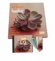 RAL Books (RAL Colour Feeling 2008/09)