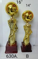 Fibre Golden Trophies for College