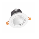 30W COB LED Downlight ( With Cree Cob and Philips Driver )