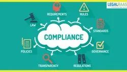 Individual Consultant Banking and Finance Auditing Assurance Services
