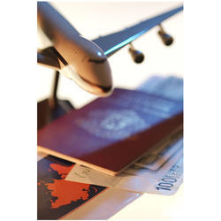 Airline Tickets Domestic International Service