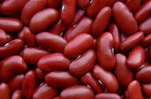 Rajma Red Kidney Beans Lal Rajma Red Rajma Capsule Red Kidney Bean Red Bean À¤² À¤² À¤° À¤œà¤® In Tri Nagar Delhi Hitech Grain Processing Private Limited Id 19852966130