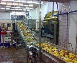 Apple Washing, Sorting, Waxing & Grading Line