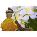 Yellow Oil Frangipani Attar, Liquid, Packaging Size: 500 Ml