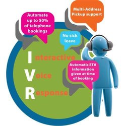 1 Year Domestic IVR Solution, In Pan India