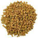 Organic Fenugreek Seed