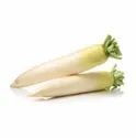 Radish Seeds, Packaging Type: Packet, Packaging Size: 100g