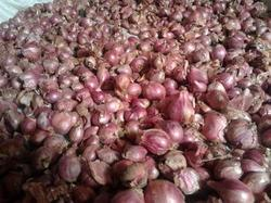 Royal Small Onion Co5 Seed, Pack Size: 1 Kg