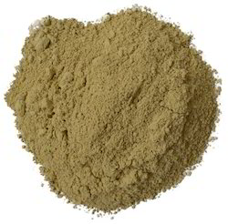 Bhumi Amla Extract, Pack Size: 5 kg