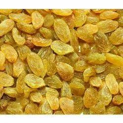 Loose Golden Dried Resin, Packaging Type: Vacuum Bag