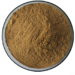 Emblica Officinalis Fruit Dry Extract