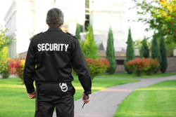 Security Service, In Local And India