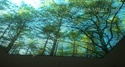 Wonderful LED Ceiling