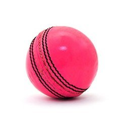 Lather Cricket Balls 2 Piece (Pink)