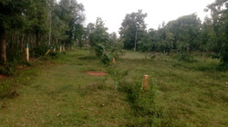 Un Construction Plot Low Coast Residential Plots, Size/ Area: 111 Square Yards , Yes