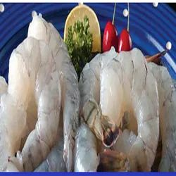 Seafood Export Service