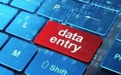 Data Editing Service