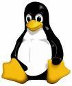 Linux VPS Hosting Service