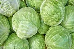 A Grade Cabbage, PP bag, 20 kg