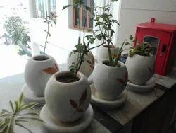 Round Cement Pots