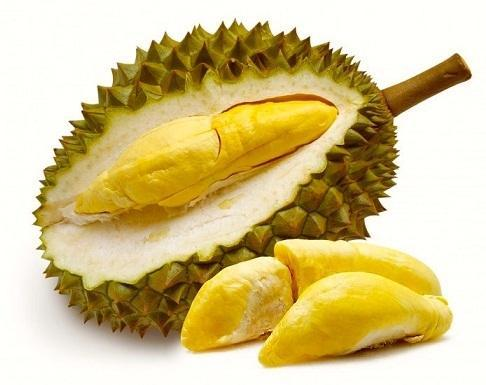 durian fruit exotic healthy fresh private limited chennai id