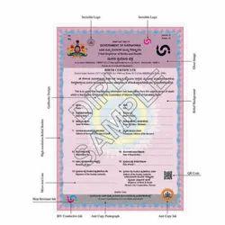 20086 Birth Certificate Paper