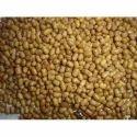 Moth Bean Seed Food