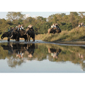 Chitwan National Park Holiday Package